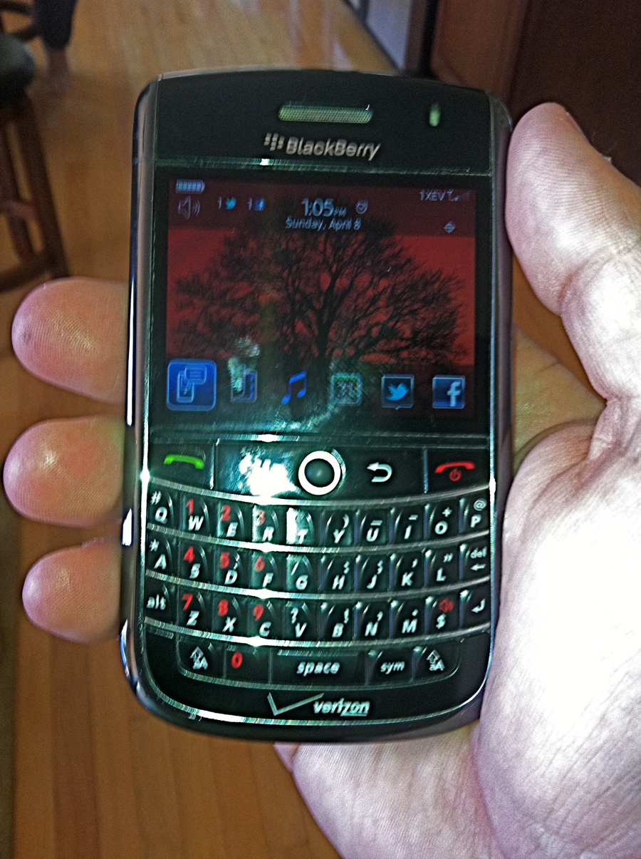 Canadian blackberry
