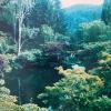 1987-butchart-gardens-07