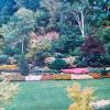 1987-butchart-gardens-08