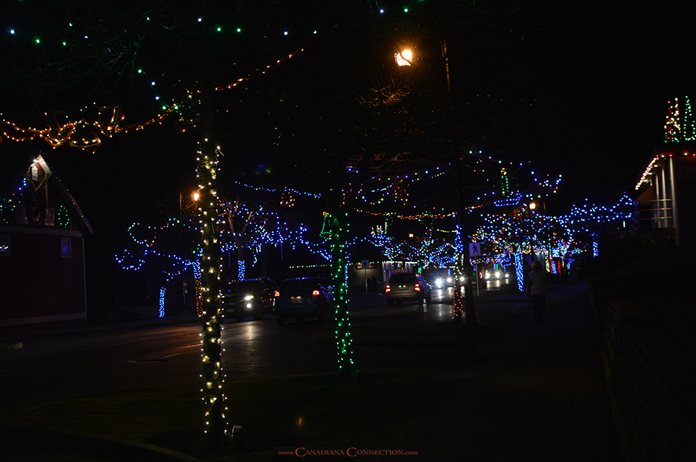 2017-12-03-ladysmith-festival-of-lights-08