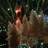 2017-12-03-ladysmith-festival-of-lights-13