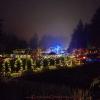 2017-12-15-butchart-gardens-23
