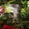 2017-12-15-butchart-gardens-28