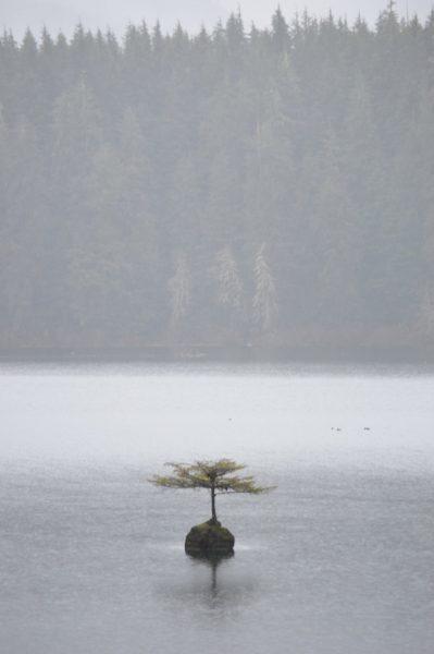 Fairy Lake BC